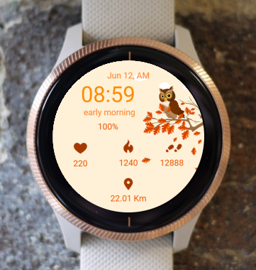 Garmin Watch Face - Wise Owl