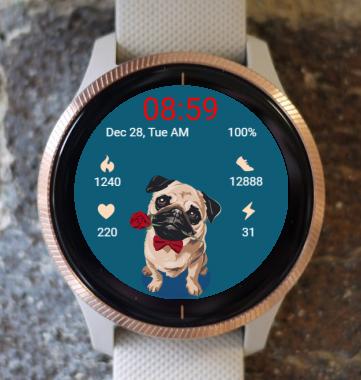 Garmin Watch Face - Dog - Pug
