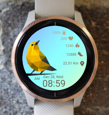 Garmin Watch Face - Bird Time