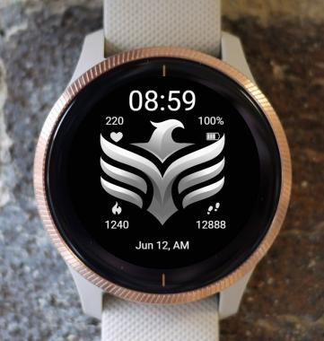 Garmin Watch Face - BW D202
