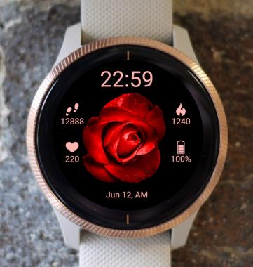 Garmin Watch Face - BW Flower 21