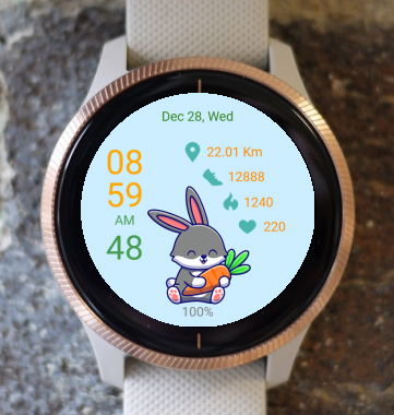 Garmin Watch Face - Cute Bunny