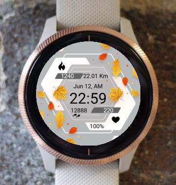 Garmin Watch Face - Autumn Magic 12