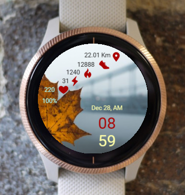 Garmin Watch Face - Bridge To Infinity