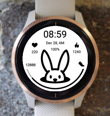 Garmin Watch Face - Bunny View