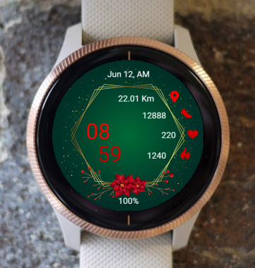 Garmin Watch Face - Awooche GCH