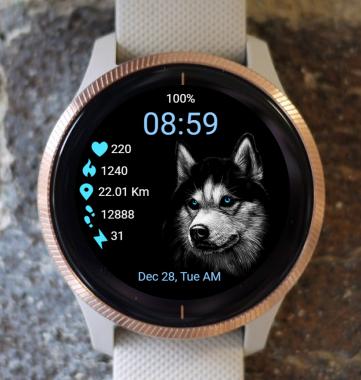Garmin Watch Face - Dog - Husky
