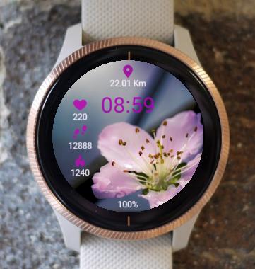 Garmin Watch Face - Flowering