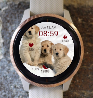 Garmin Watch Face - Together in White
