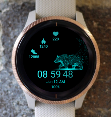 Garmin Watch Face - Bear Light