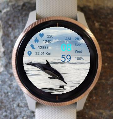 Garmin Watch Face - Dolphin
