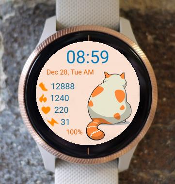 Garmin Watch Face - Cat 01