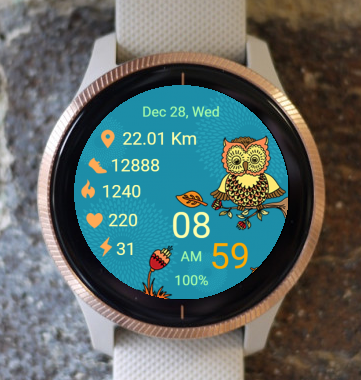 Garmin Watch Face - Autumn Owl