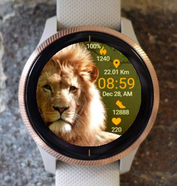 Garmin Watch Face - King