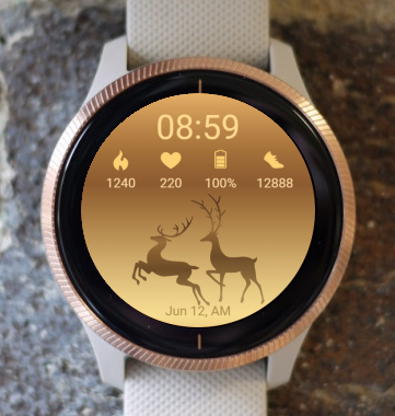 Garmin Watch Face - Golden Deers