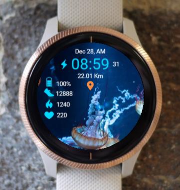 Garmin Watch Face - Ocean Inhabitants
