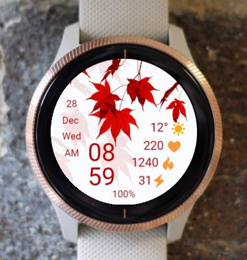 Garmin Watch Face - Autumn 02