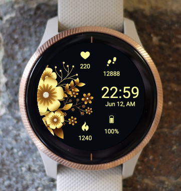 Garmin Watch Face - Attractive