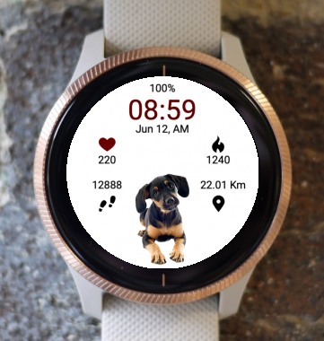 Garmin Watch Face - Puppy Wait