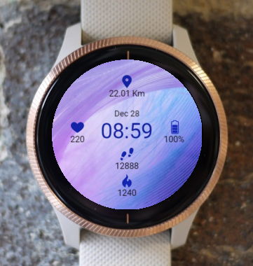 Garmin Watch Face - Tinted