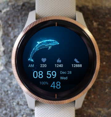 Garmin Watch Face - Blue Dolphin