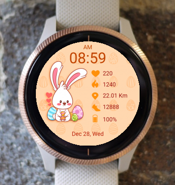 Garmin Watch Face - Funny Bunny