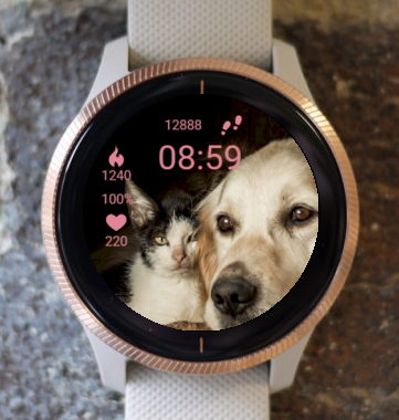 Garmin Watch Face - Friends