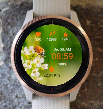 Garmin Watch Face - Spring Filing