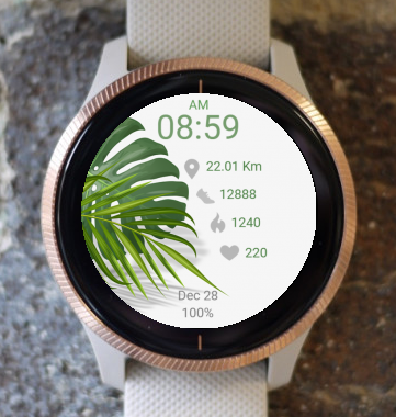 Garmin Watch Face - Green Leaves