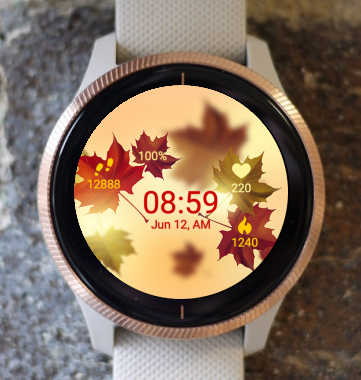 Garmin Watch Face - Autumn Sunset