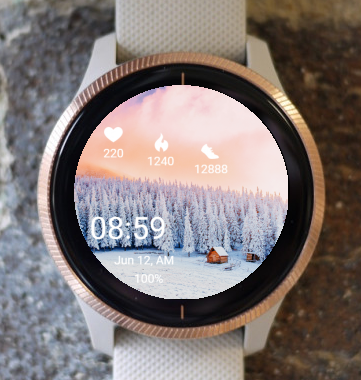 Garmin Watch Face - Winter 01