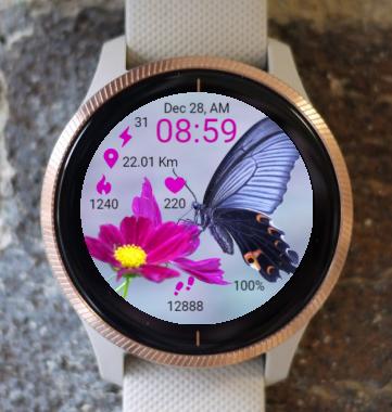 Garmin Watch Face - R Butterfly
