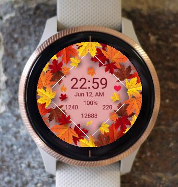 Garmin Watch Face - Autumn Magic 18