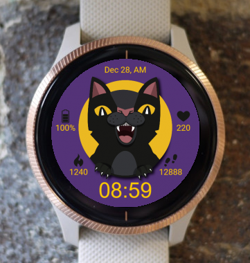 Garmin Watch Face - Evil Cat G
