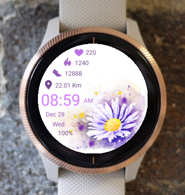 Garmin Watch Face - Daisy 01