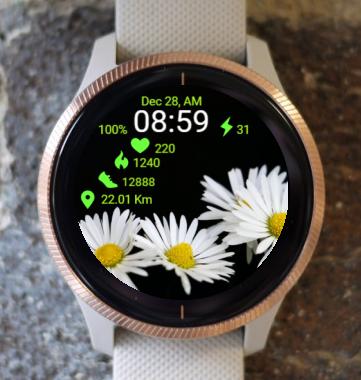 Garmin Watch Face - Wonderful Daisy