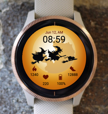 Garmin Watch Face - Flyaway