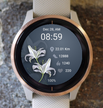 Garmin Watch Face - White Flowers