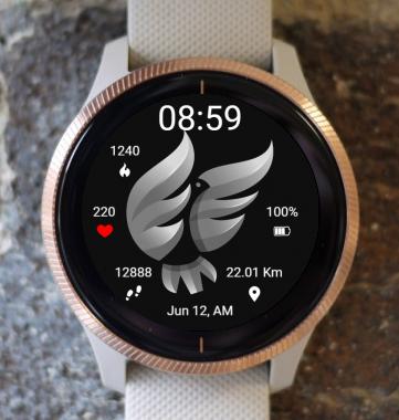 Garmin Watch Face - BW D203