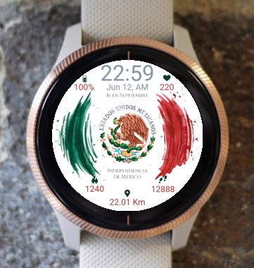 Garmin Watch Face - BW C103