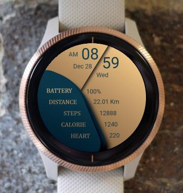 Garmin Watch Face - MR 3003