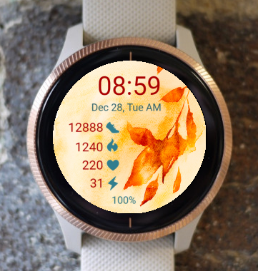 Garmin Watch Face - Autumn 05