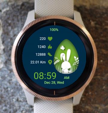 Garmin Watch Face - Bunny Frame