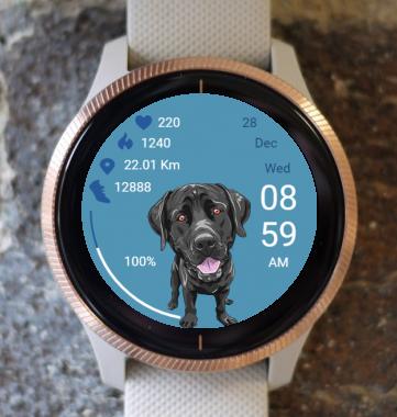 Garmin Watch Face - Dog 02