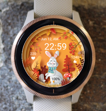 Garmin Watch Face - Autumn Magic 26