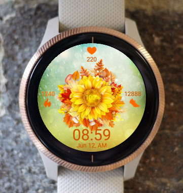 Garmin Watch Face - Sunflower RG