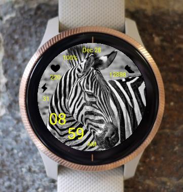 Garmin Watch Face - Zebra