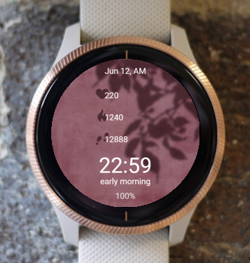 Garmin Watch Face - Shadow