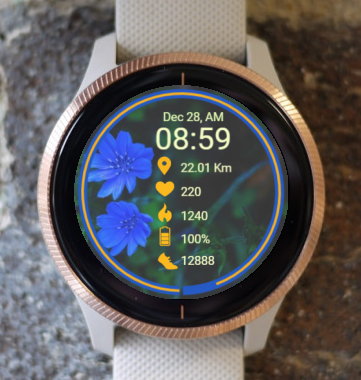 Garmin Watch Face - Ga Flower Blue