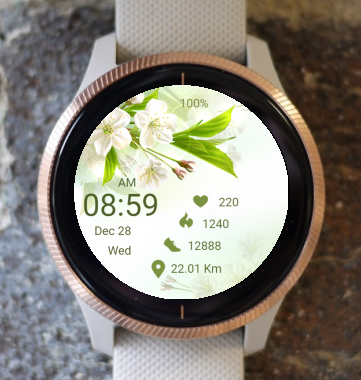 Garmin Watch Face - Blossom